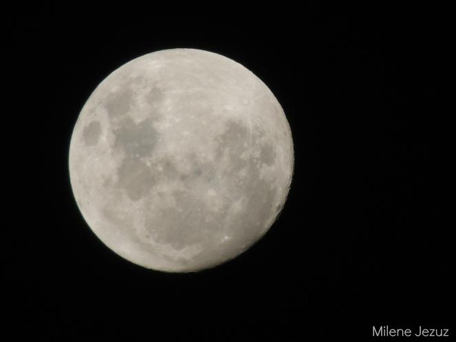 lua14012014
